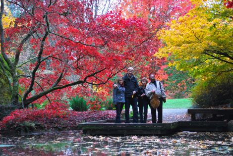 Autumnal colors that decorate the Washington Park Arboretum are a welcome invitation to any local and visitor to become a park tourist.