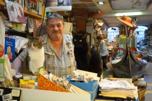 Meet Luigi, the owner of Acqua Alta Bookstore, and his feline friends.