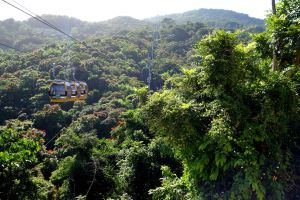 Skybuckets coast high above the rainforest canopy of La Marquesa National Park.